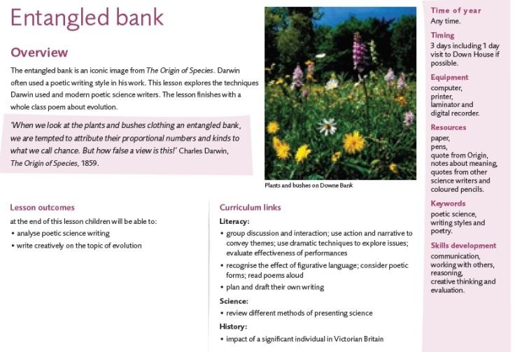 entangled bank